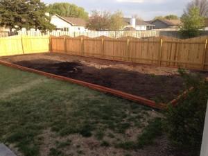 backyard-spring-2014