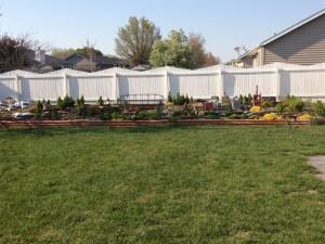 backyard-spring-2016